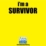Ulman_Survivor website